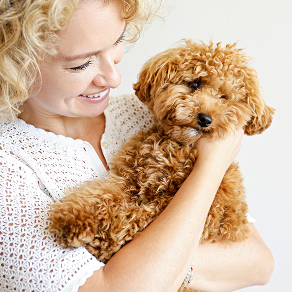 Lady holding toy poodle