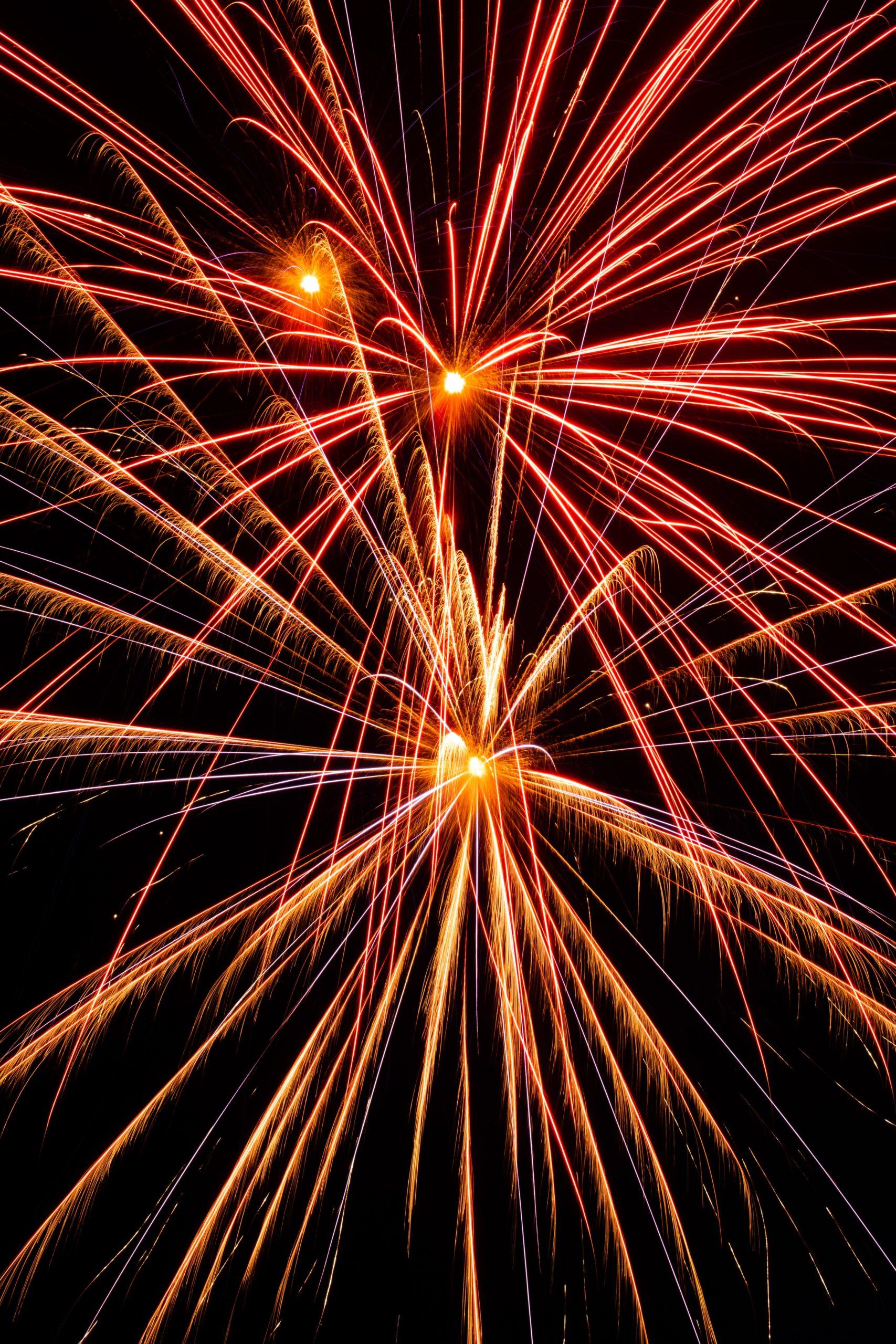Schützen Sie Ihr Haustier bei Feuerwerk